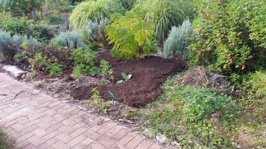 herb-area-compost
