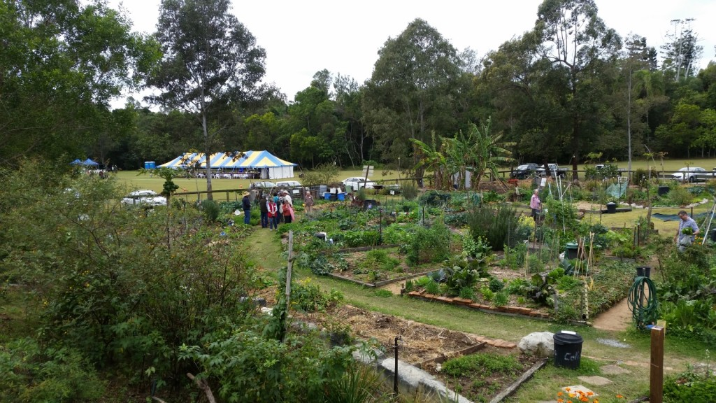 Touring the Garden