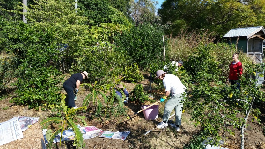 Workers weeding and mulching the Orchard