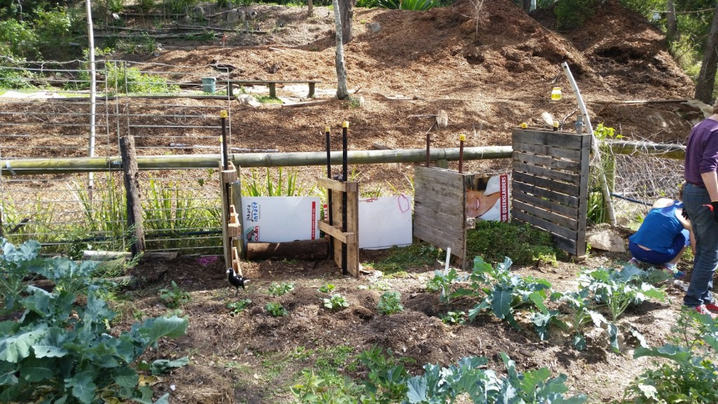 New Compost bays for the Vegie Pod