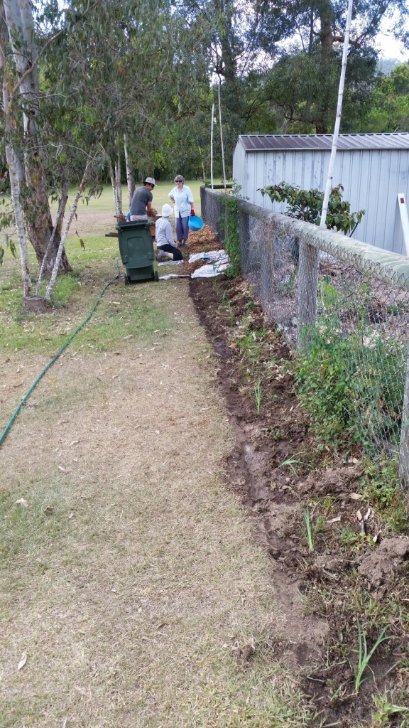 planting-lomnadra